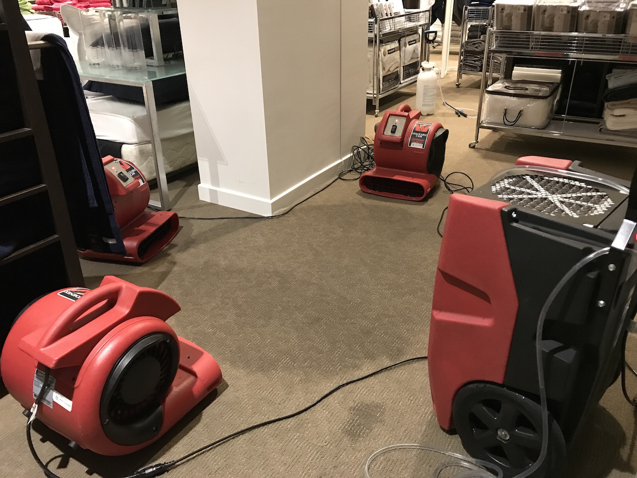 Commercial Cleaning Services in Brisbane | D&D Clean Solutions