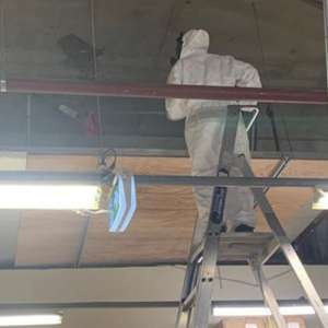 Mould Cleaning   D&D Clean Solutions