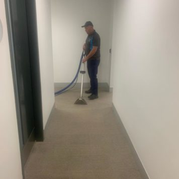 Carpet & Upholstery Cleaning | D&D Clean Solutions